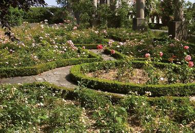 Jardin Stern